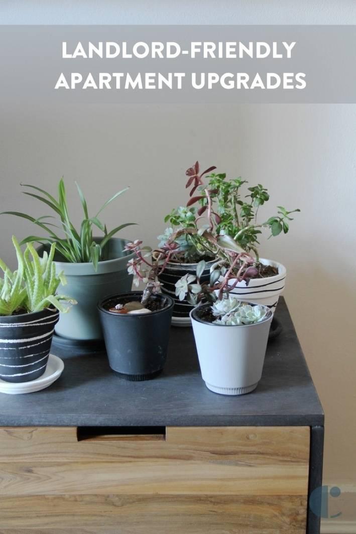 Landlord-Friendly Apartment Upgrades